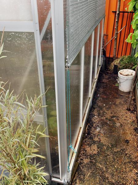 Greenhouse-4.jpeg