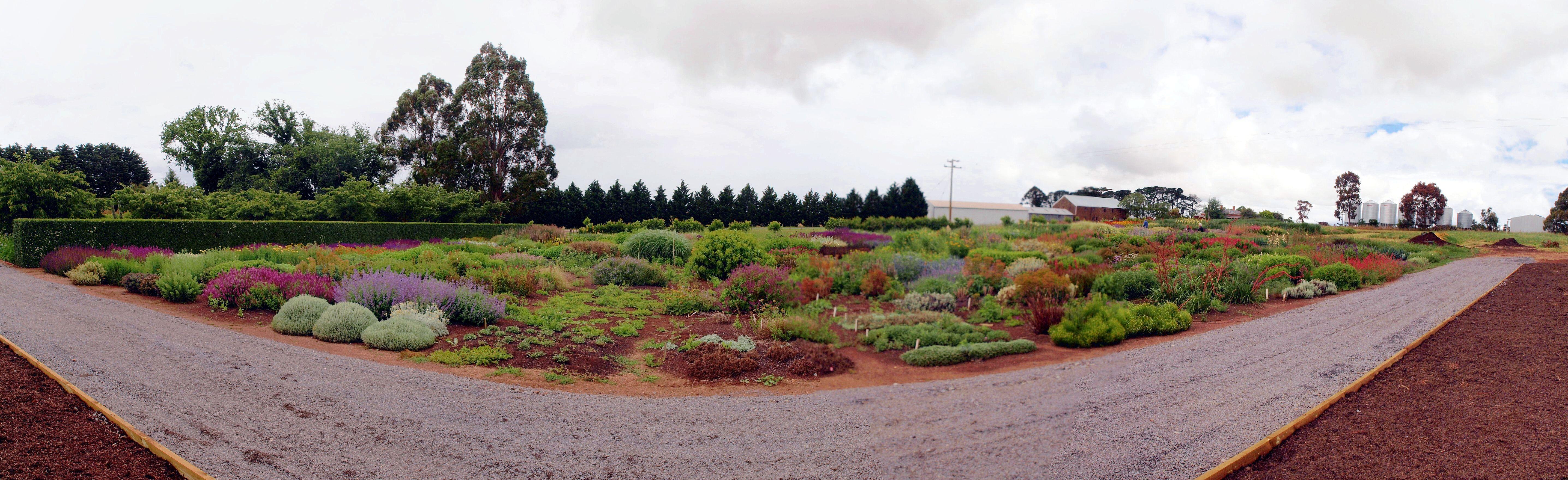 Lambley-panorama.jpeg