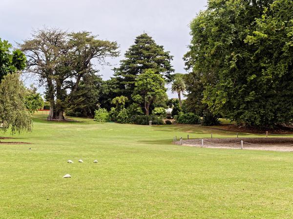 Botanic-Gardens-2.jpeg