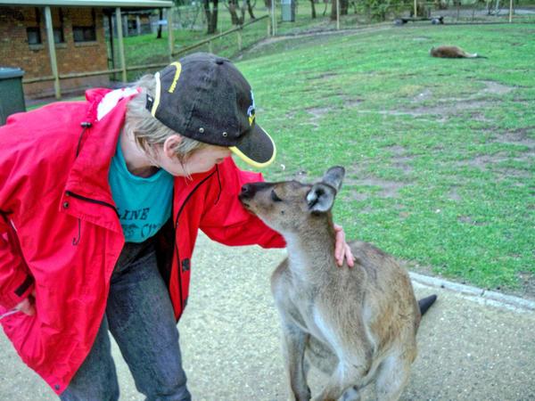 Carola-kangaroos-6.jpeg