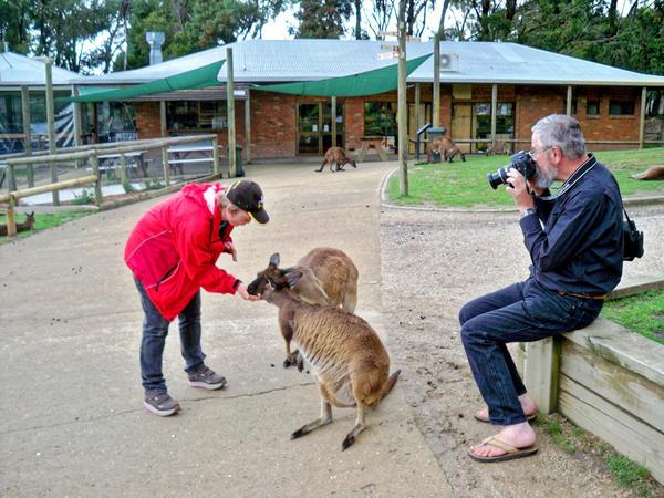 Carola-kangaroos-7.jpeg