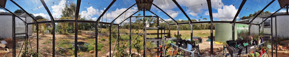 Greenhouse-panorama-2.jpeg