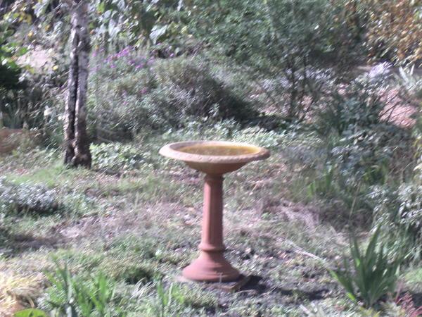 Garden-ALDI-5.jpeg