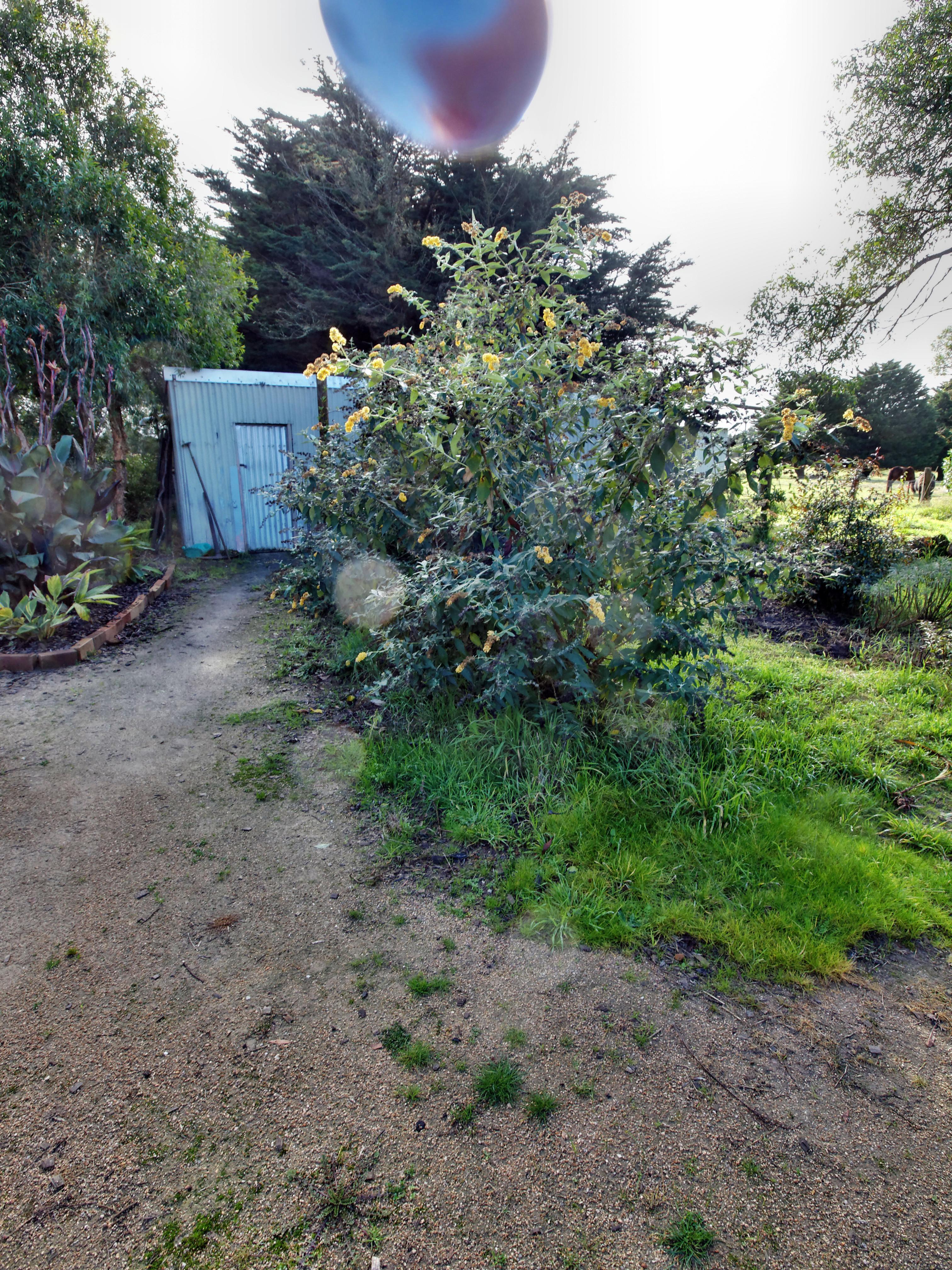 garden-path-ne-3.jpeg