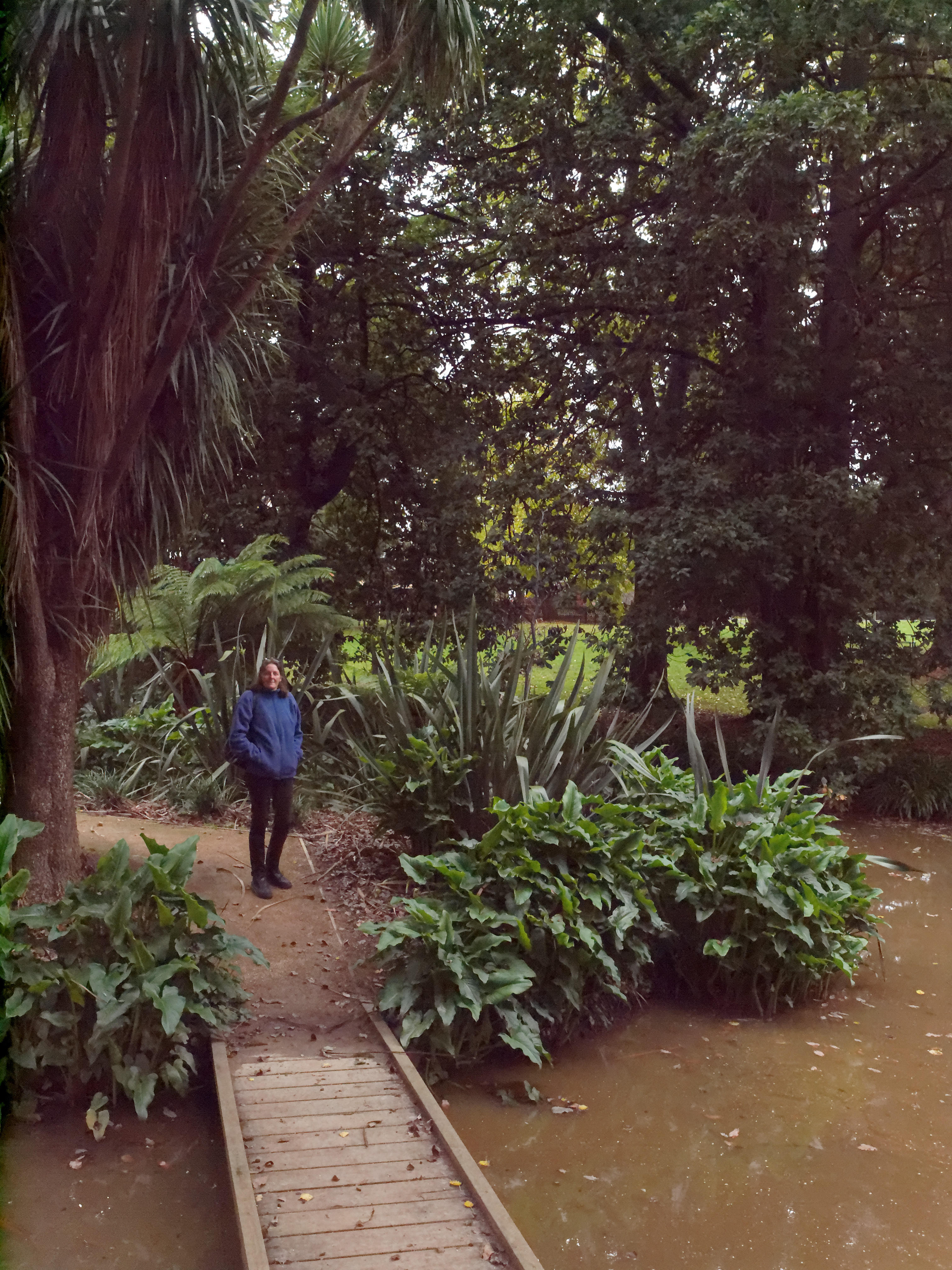 This should be Buninyong-Botanic-Gardens-1-DxO--orig.jpeg.  Is it missing?