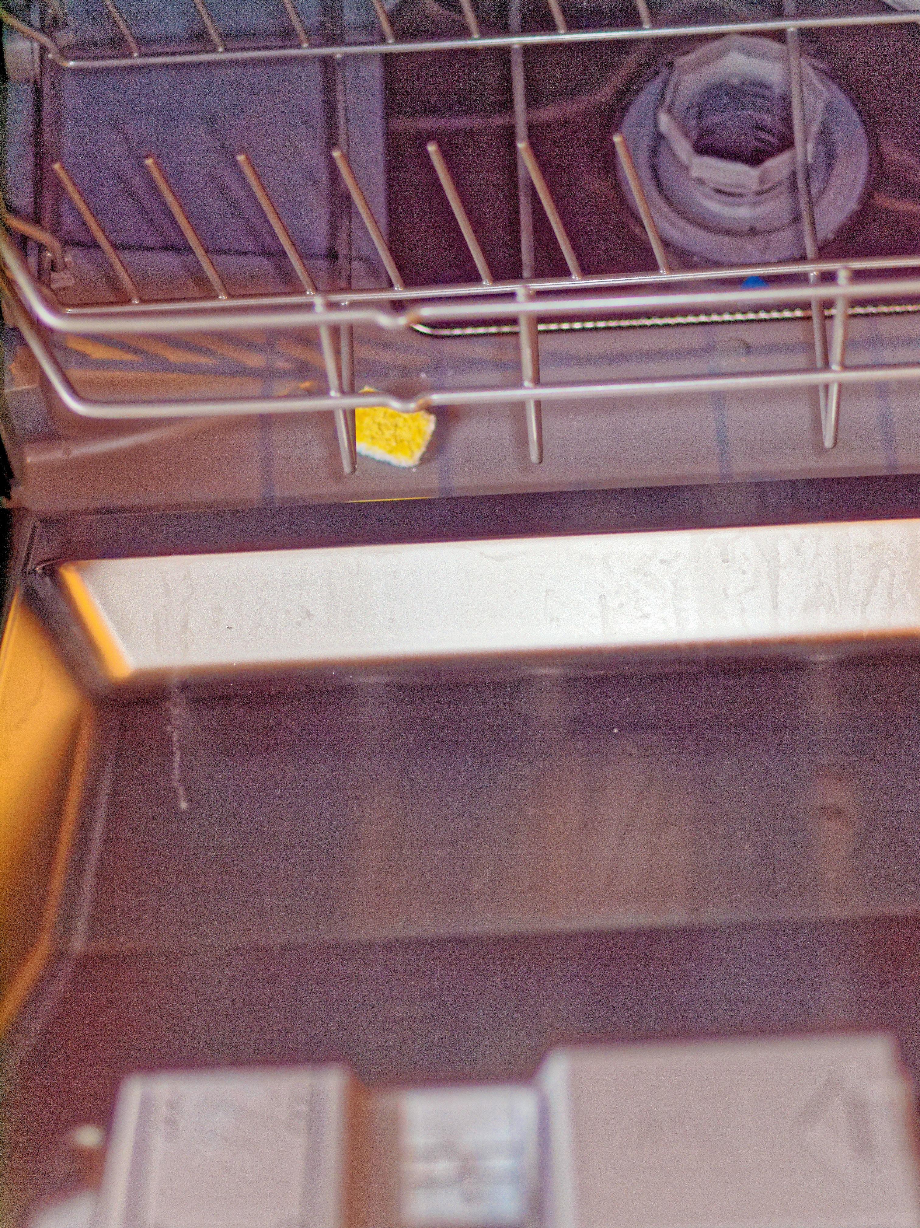 Dish-washer-4.jpeg