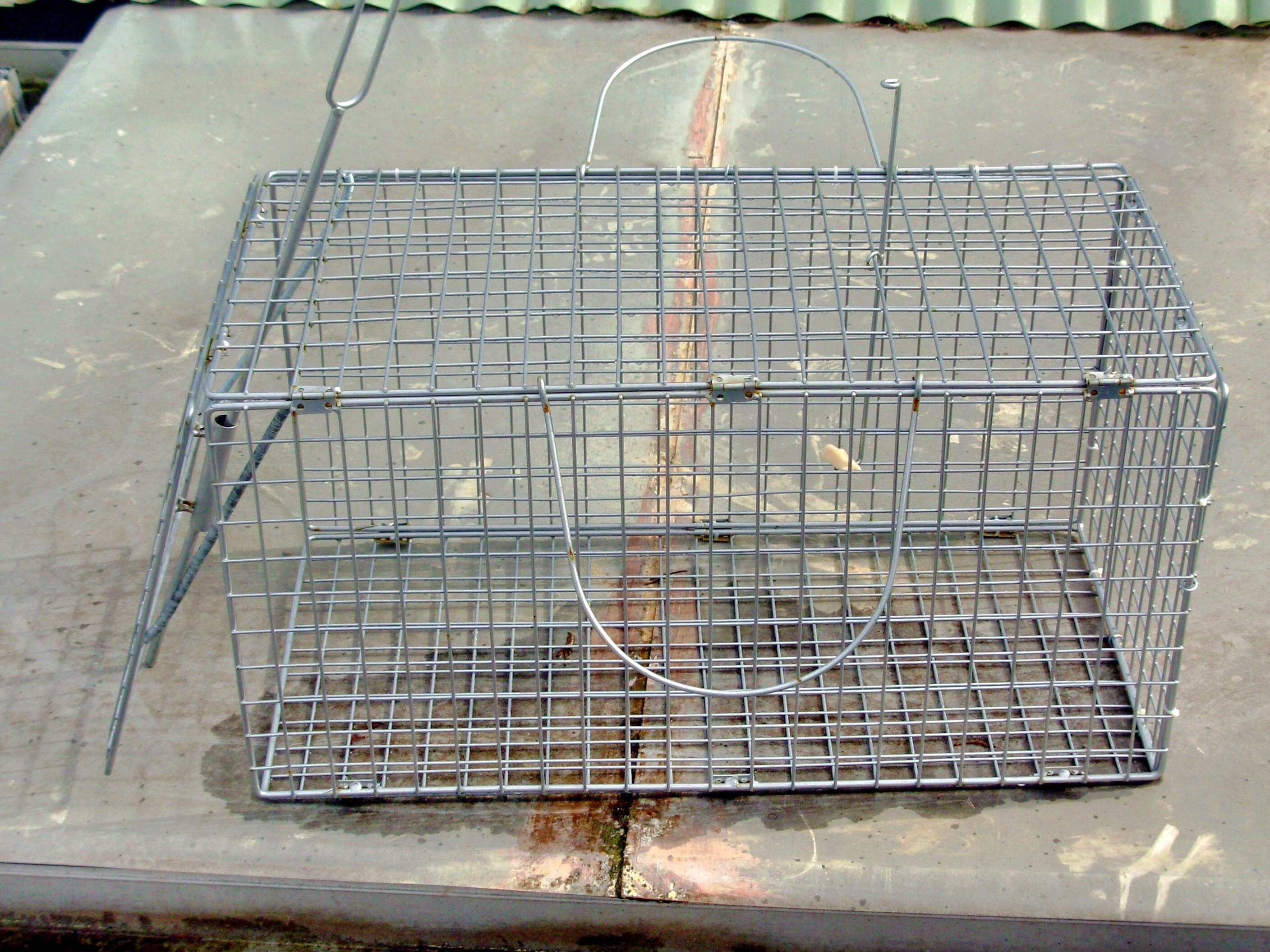Possum-trap.jpeg