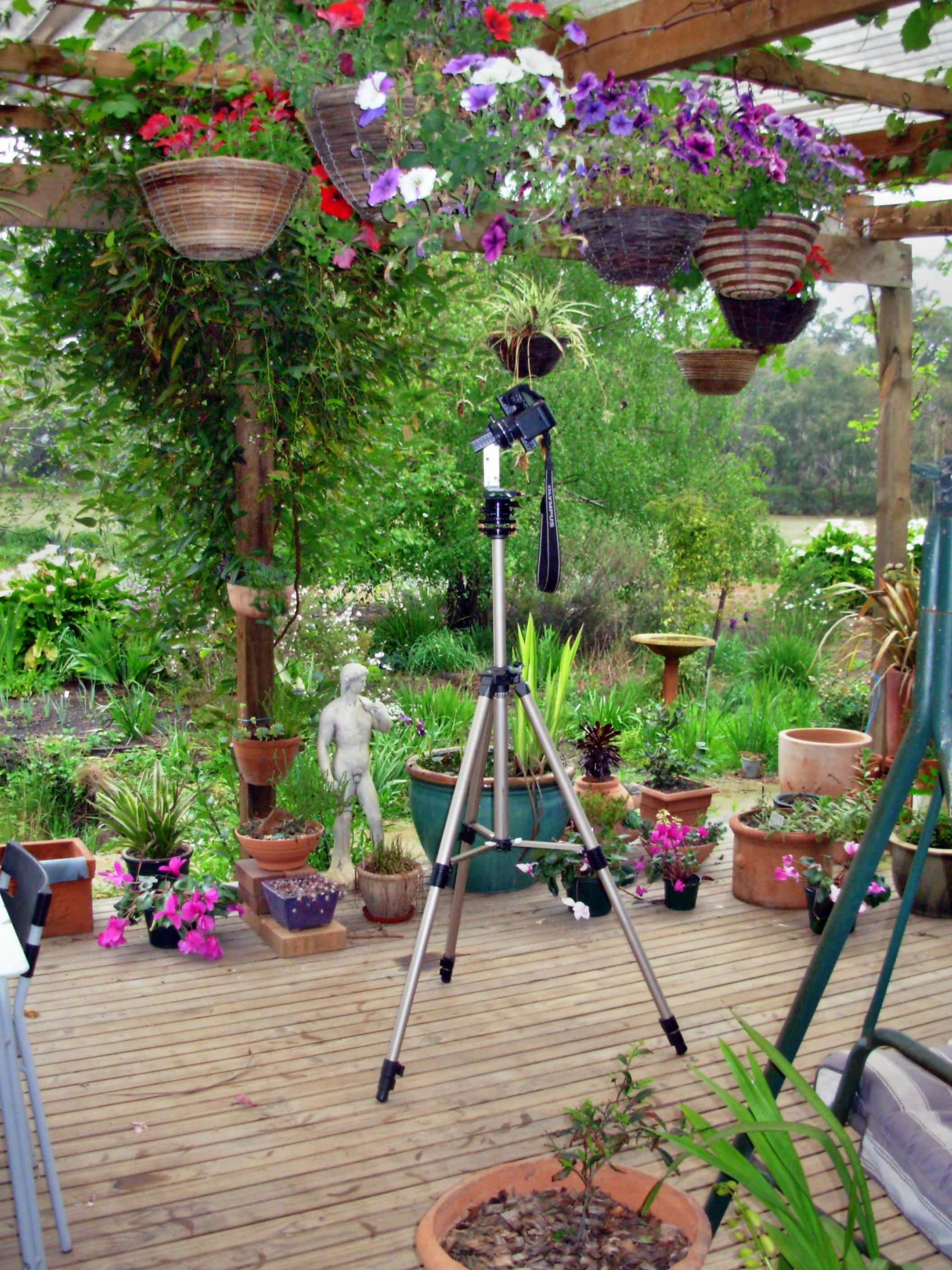 Camera-on-tripod.jpeg