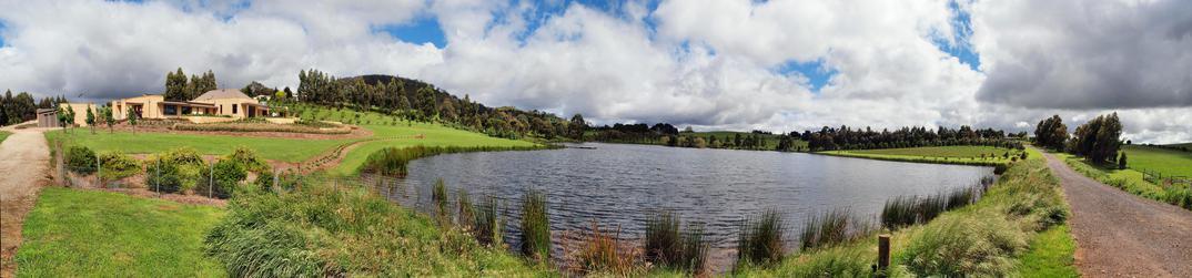 Back-lake-4.jpeg