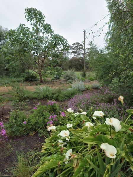 garden-centre-try1.jpeg