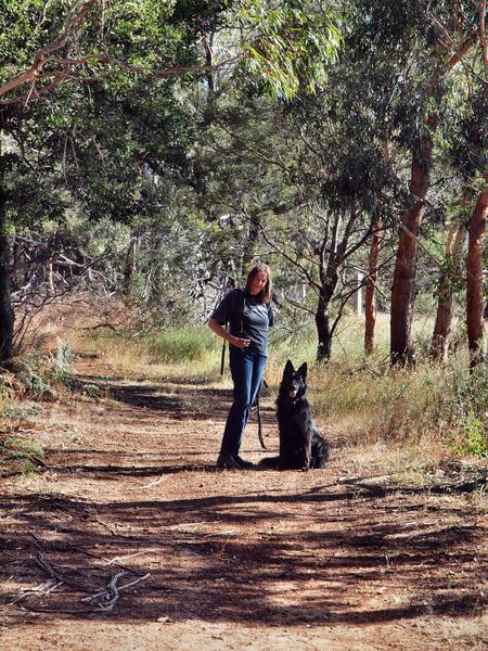 Walking-dog-3.jpeg