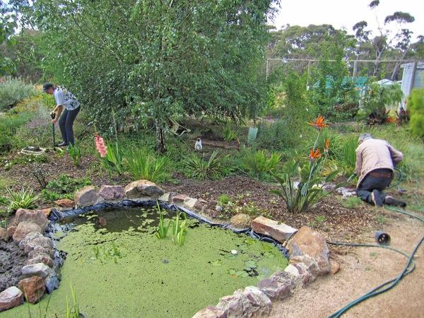 Garden-work-2.jpeg