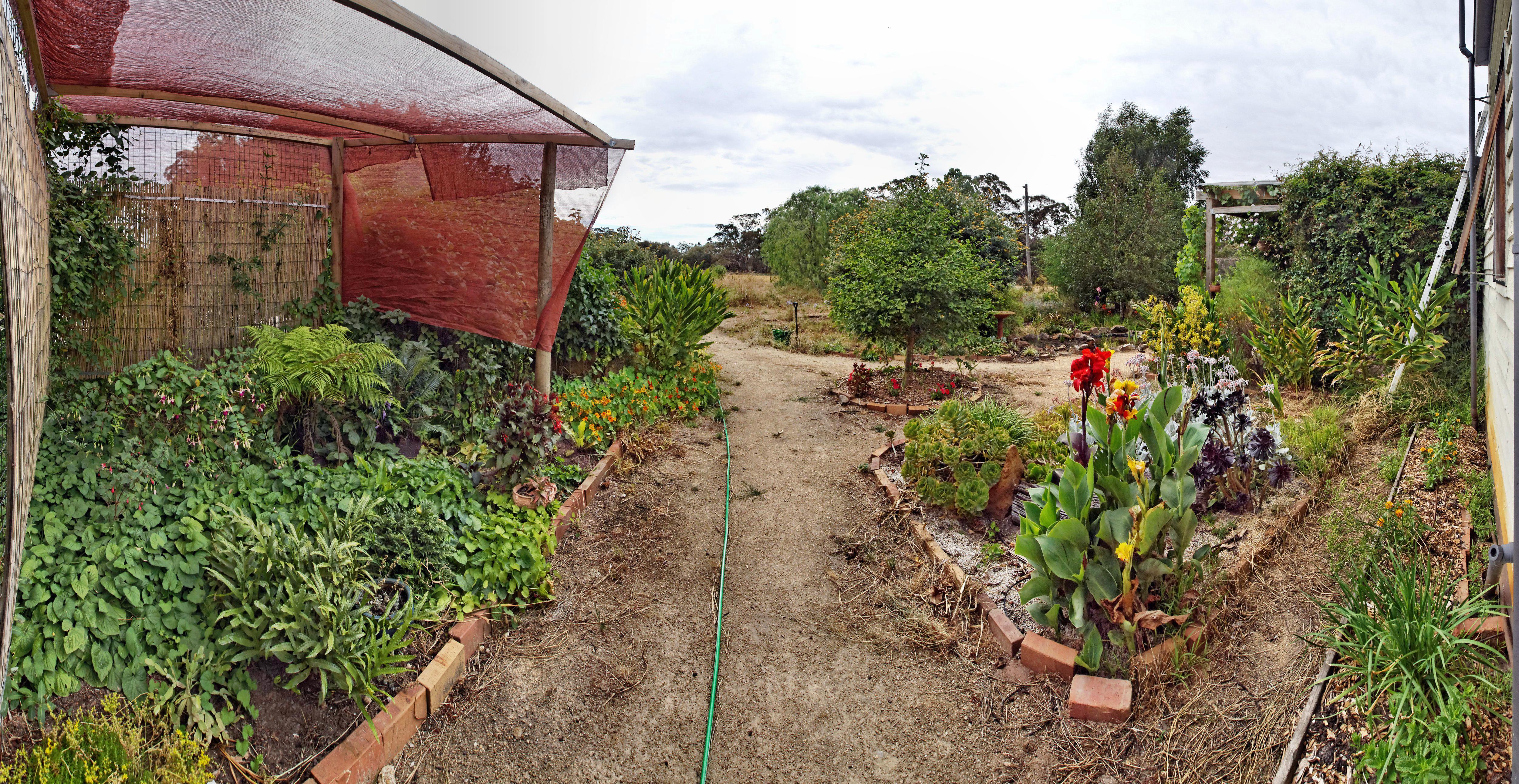 garden-se-dup.jpeg