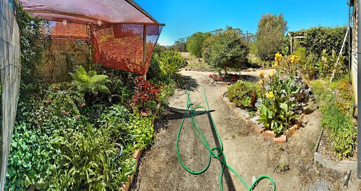 garden-se-Nikon.jpeg