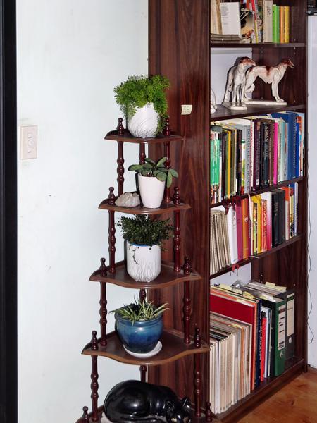 Shelves-DxO.jpeg