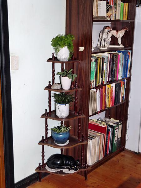 Shelves-orig.jpeg