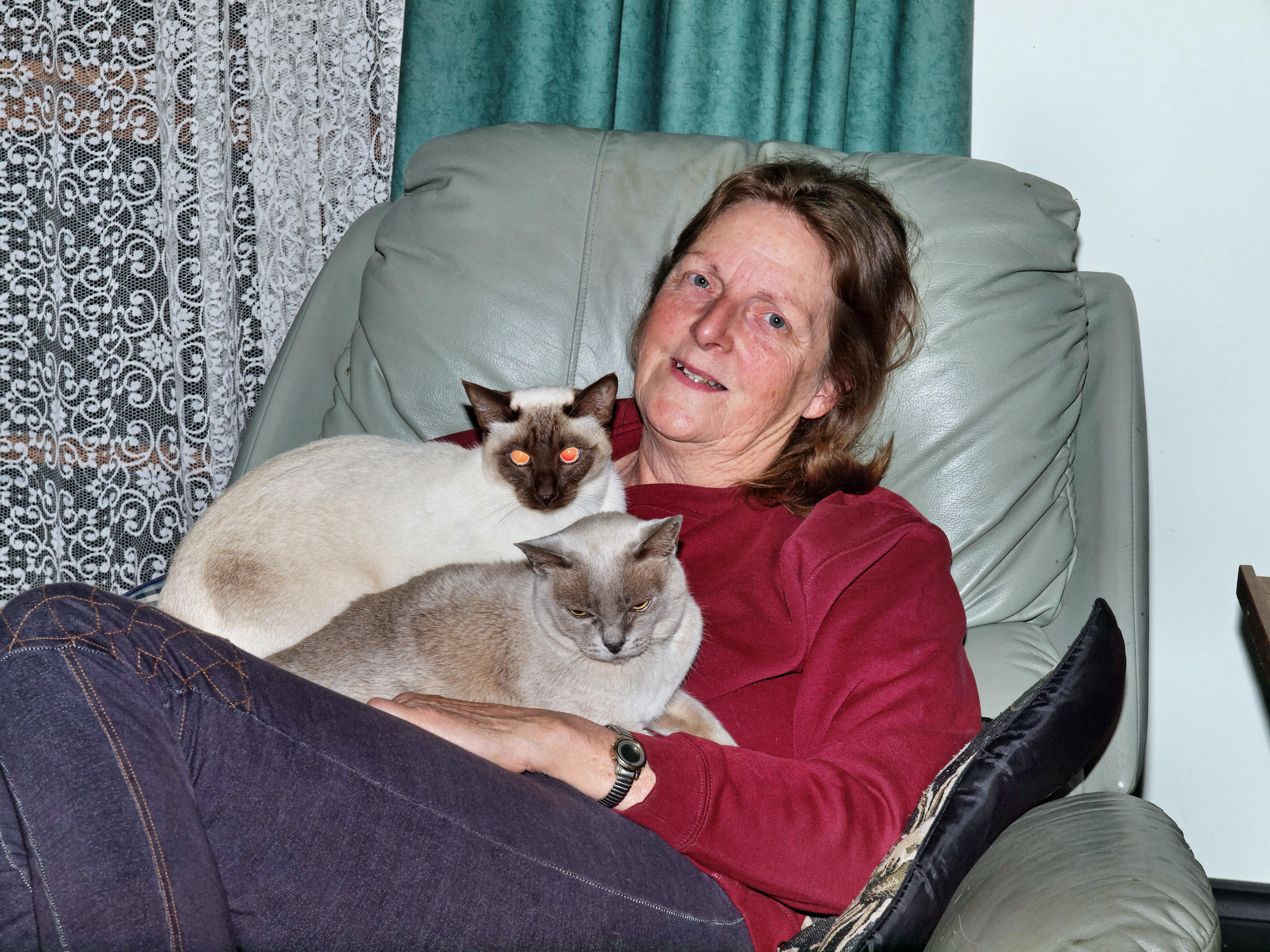 Yvonne-with-cats-1.jpeg