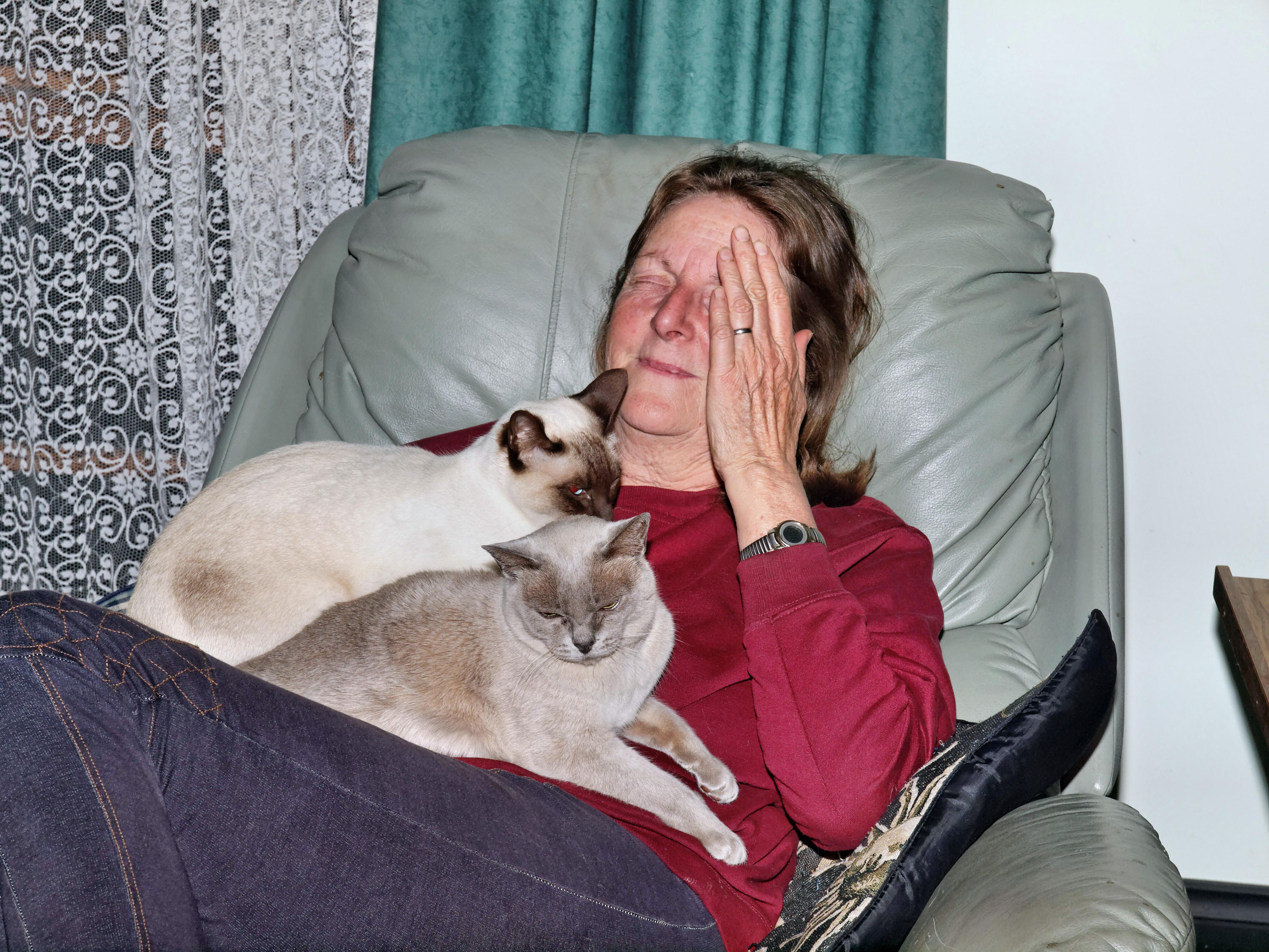 Yvonne-with-cats-2.jpeg
