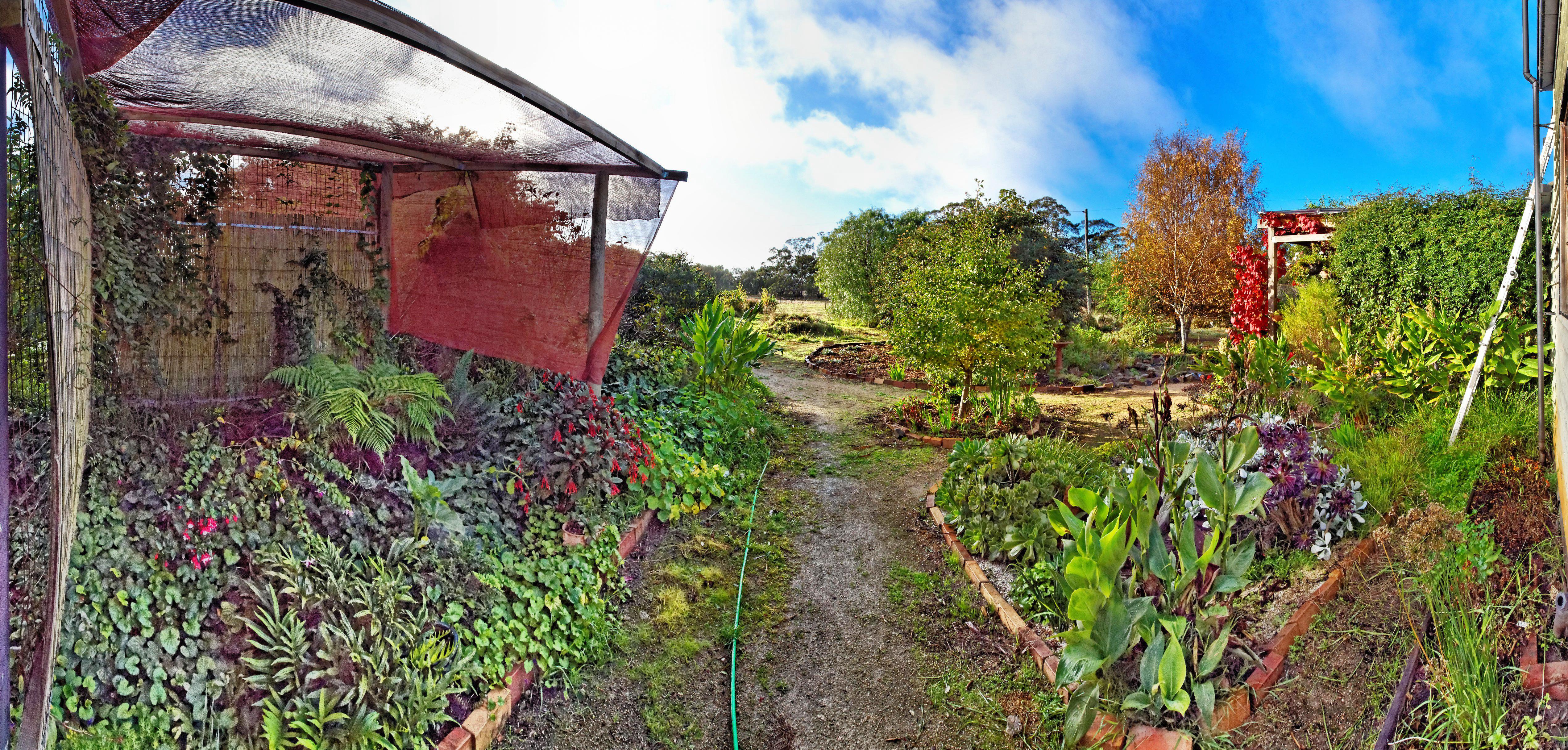 garden-se-DxO.jpeg