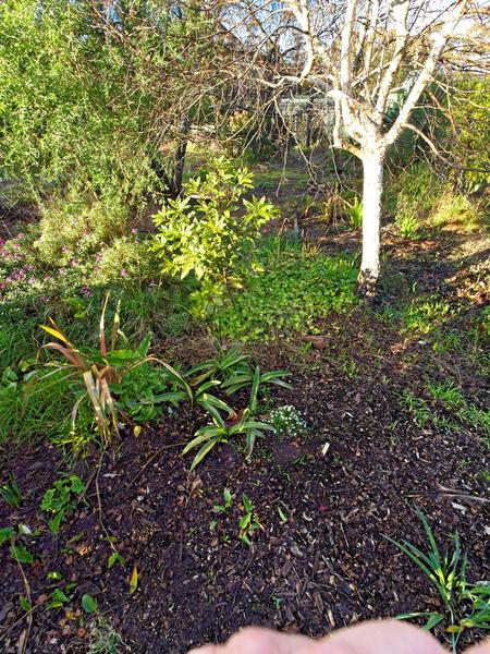 garden-centre-5.jpeg