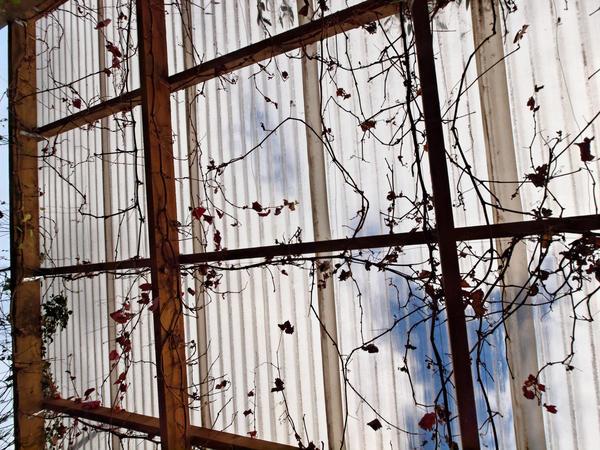 verandah-centre-18.jpeg