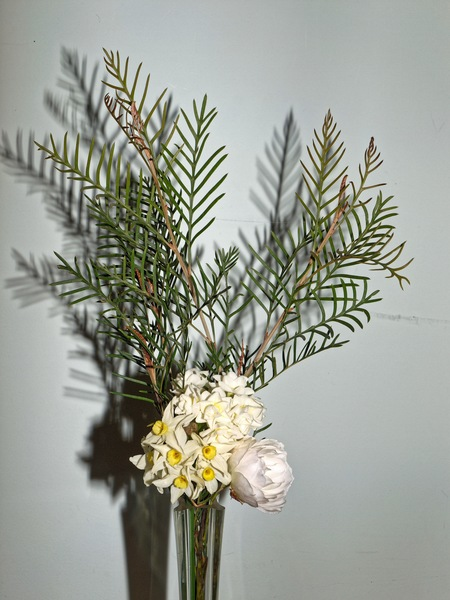 Jonquils-rose-grevillea-1.jpeg