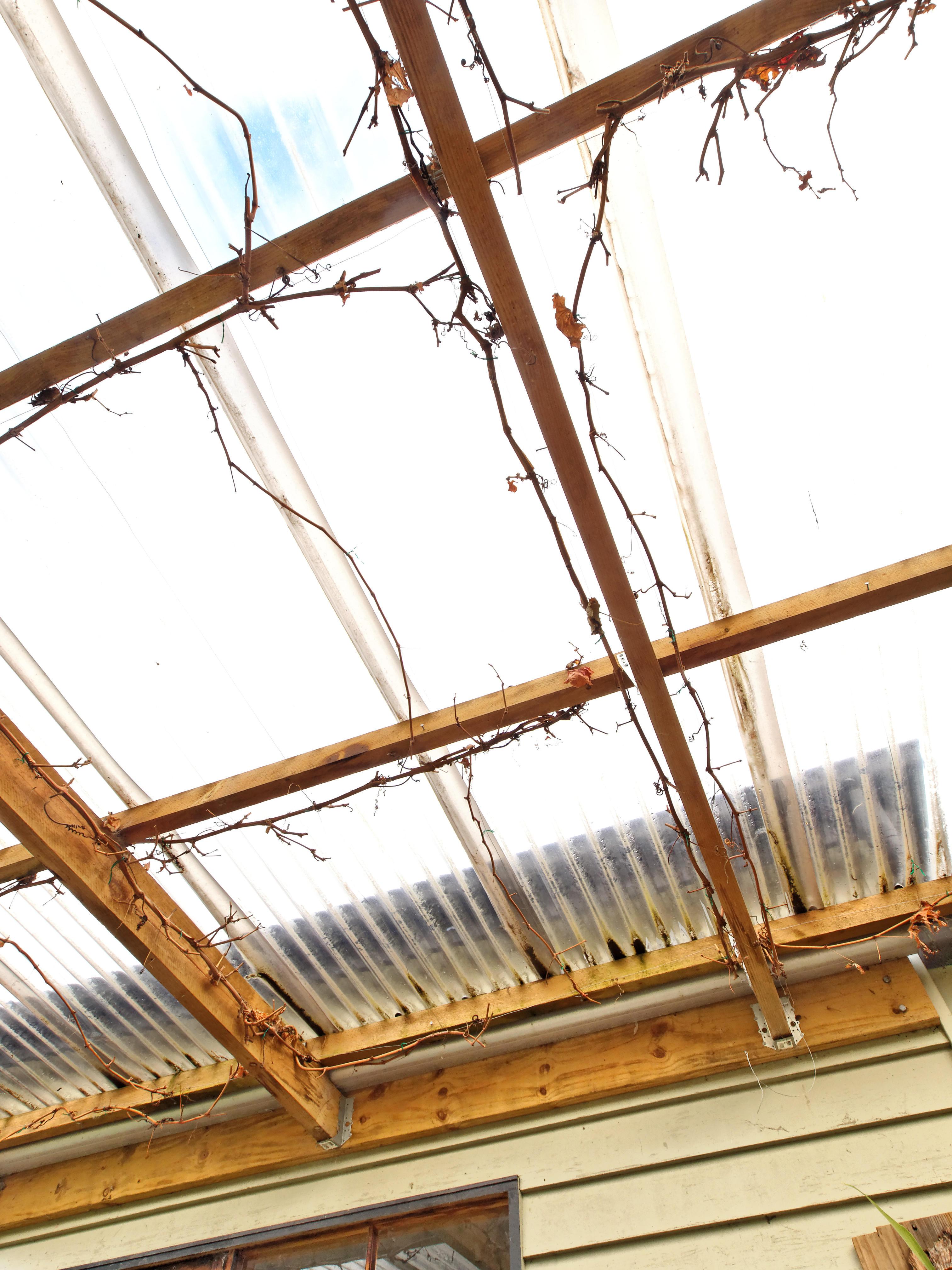 verandah-centre-19+2EV.jpeg