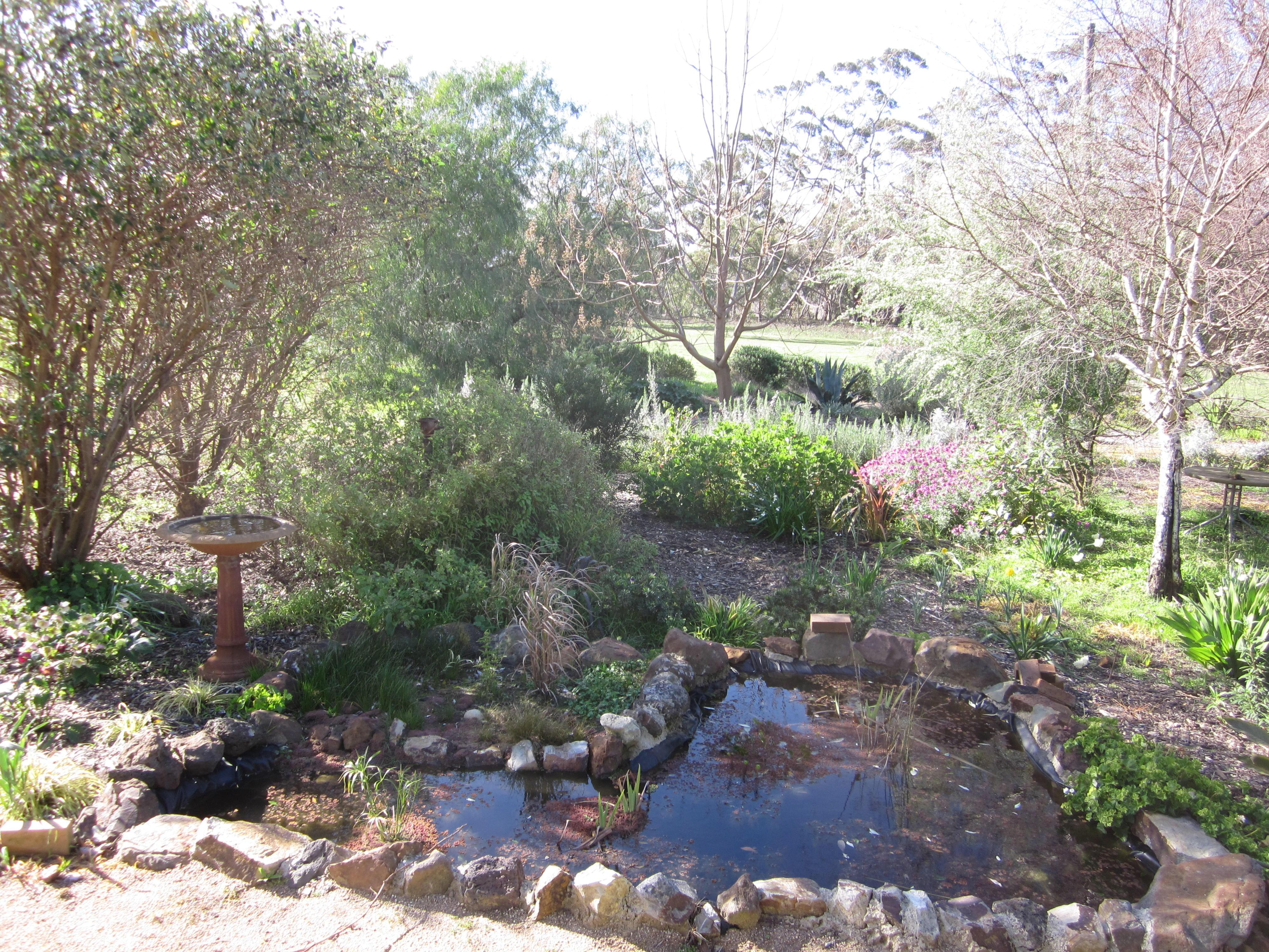 Garden-Canon-1.jpeg