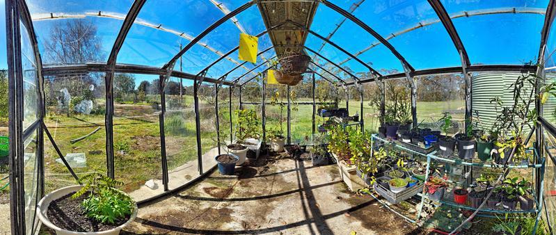 greenhouse-after.jpeg