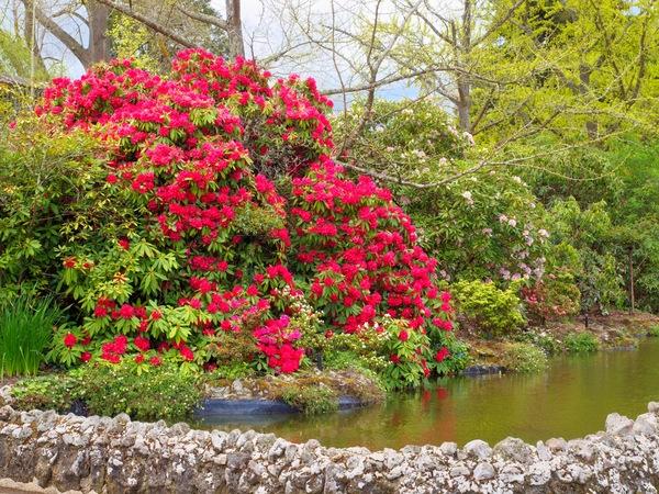 Gardens-4.jpeg