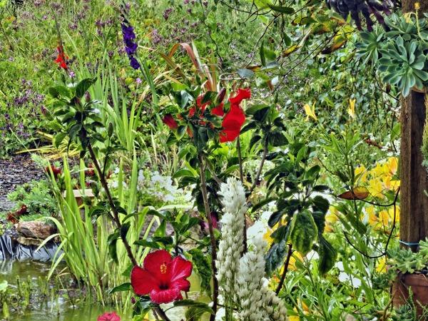Garden-flowers.PMax.jpeg
