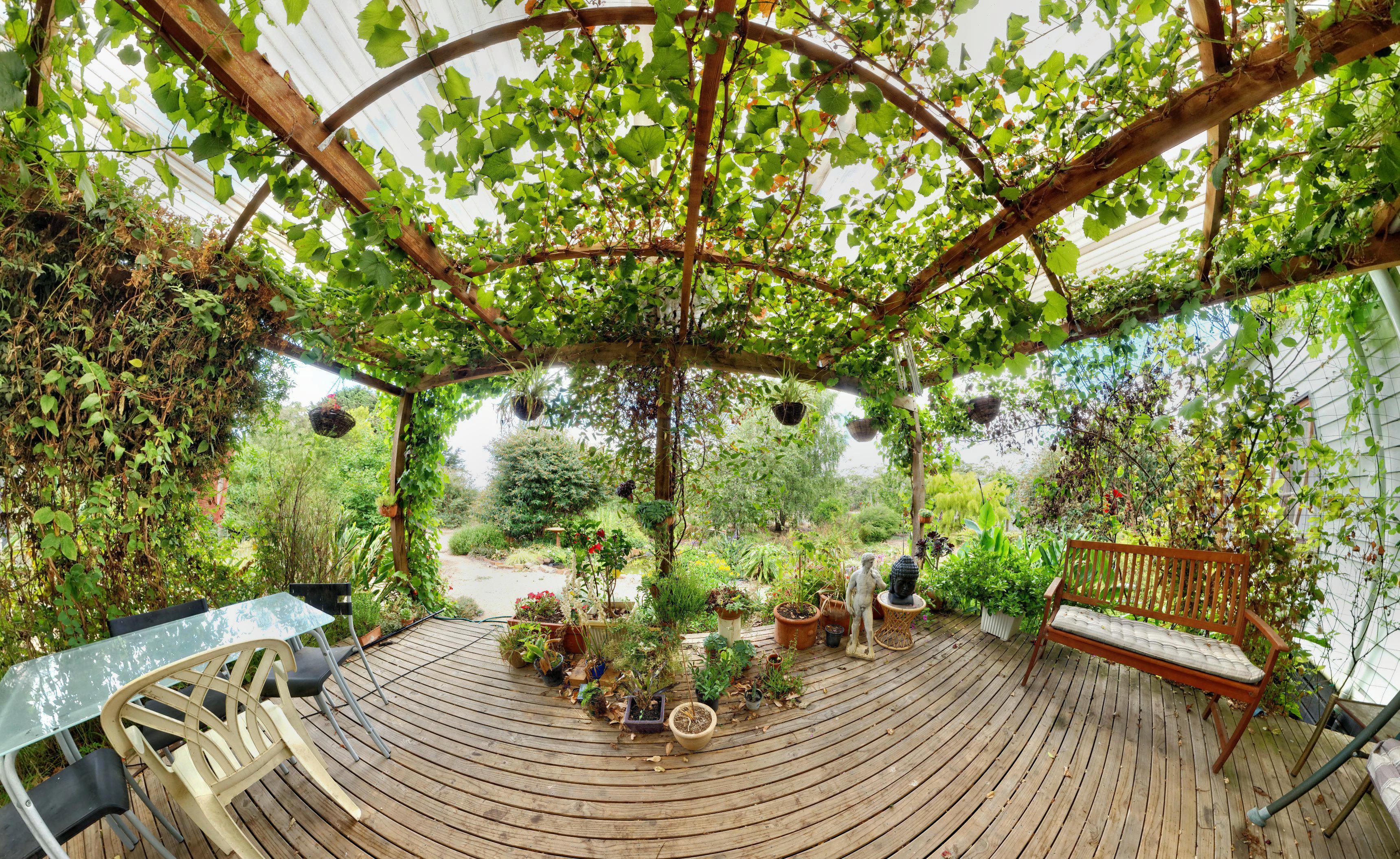 verandah-stereographic.jpeg