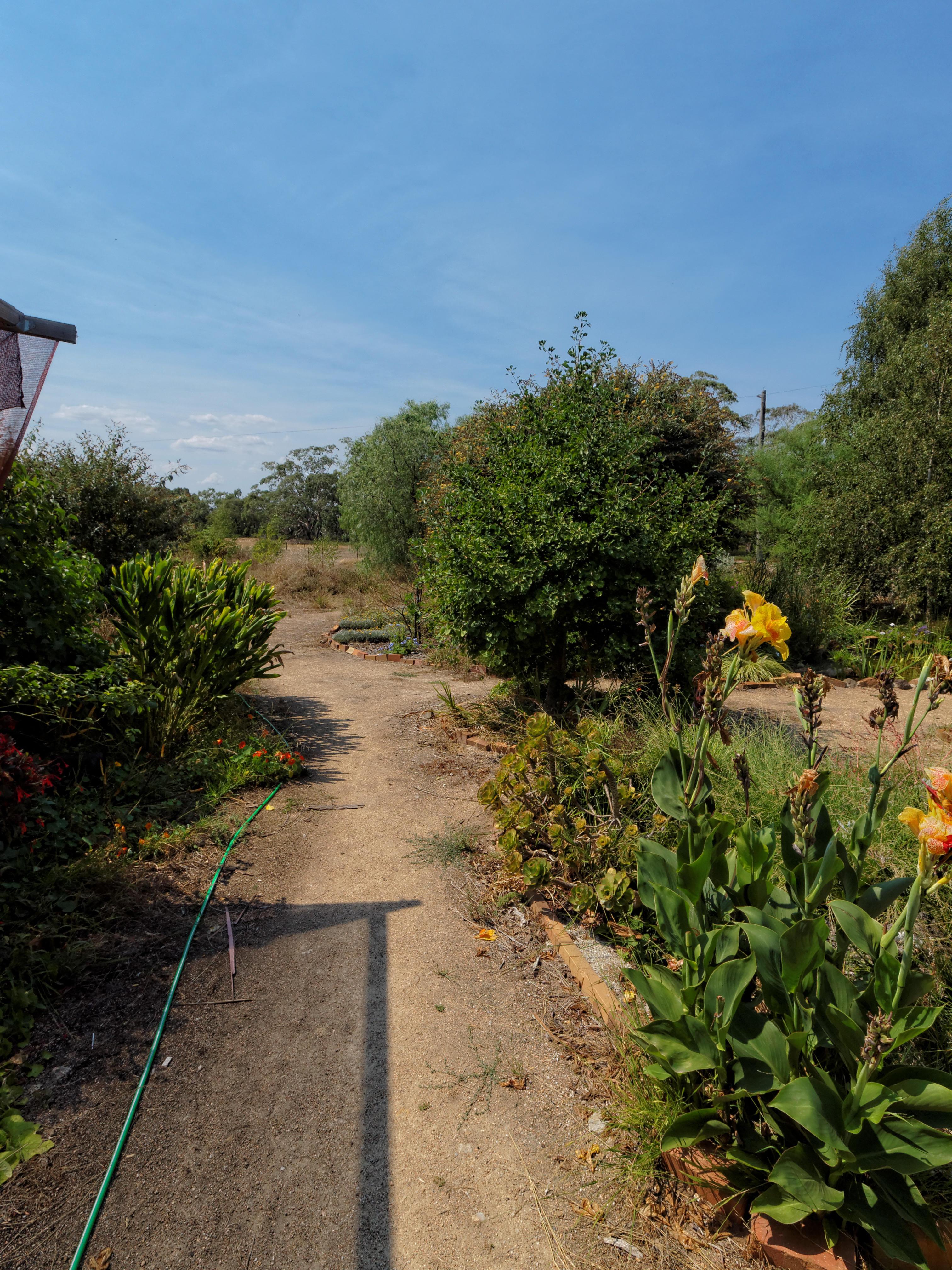 garden-se-3.jpeg