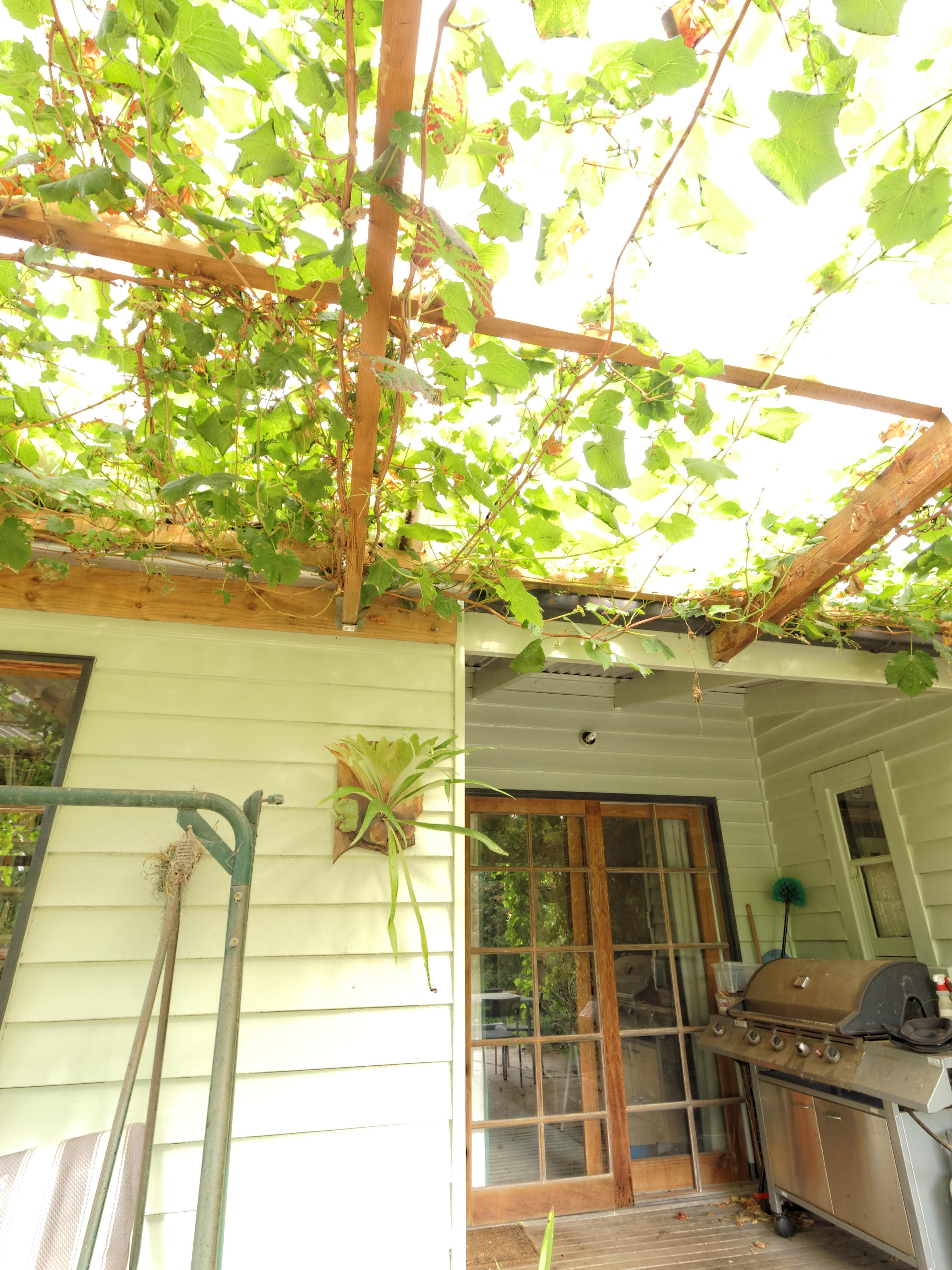 verandah-centre-10.jpeg