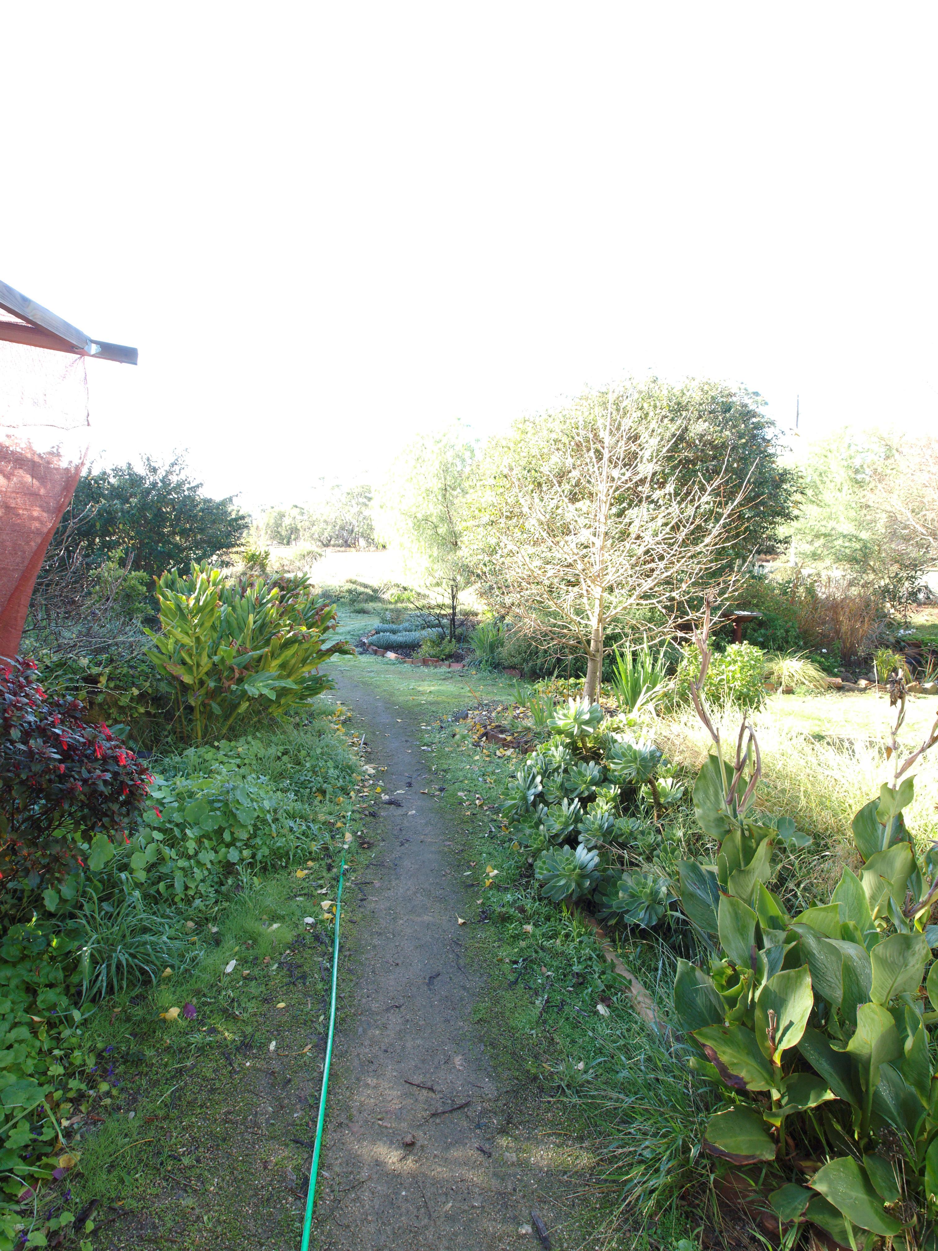 garden-se-orig-3.jpeg