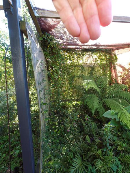 garden-se-orig-1.jpeg