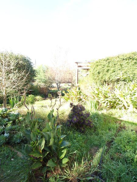 garden-se-orig-4.jpeg