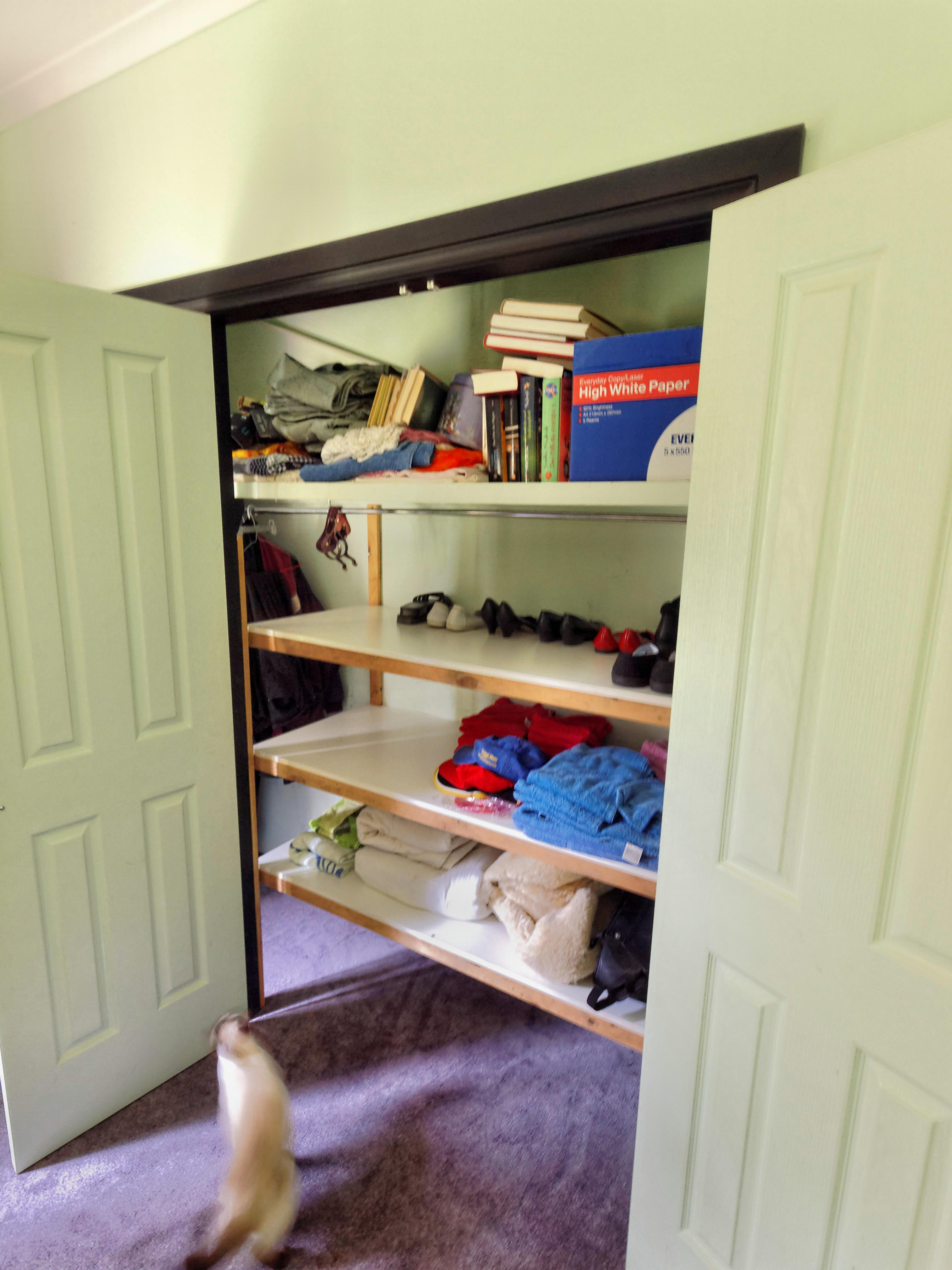 Shelves-1.jpeg