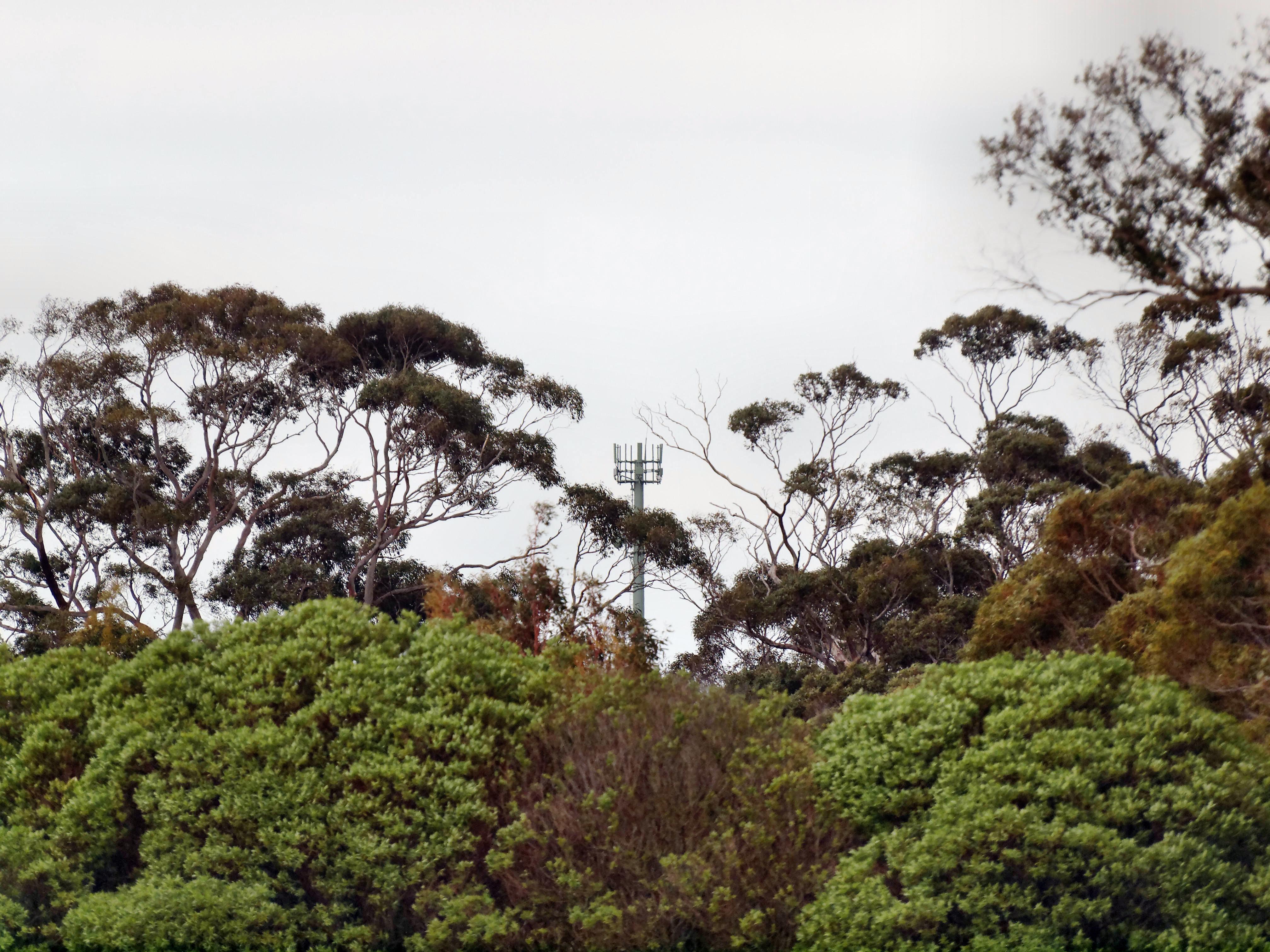 Radiation-tower-19.jpeg