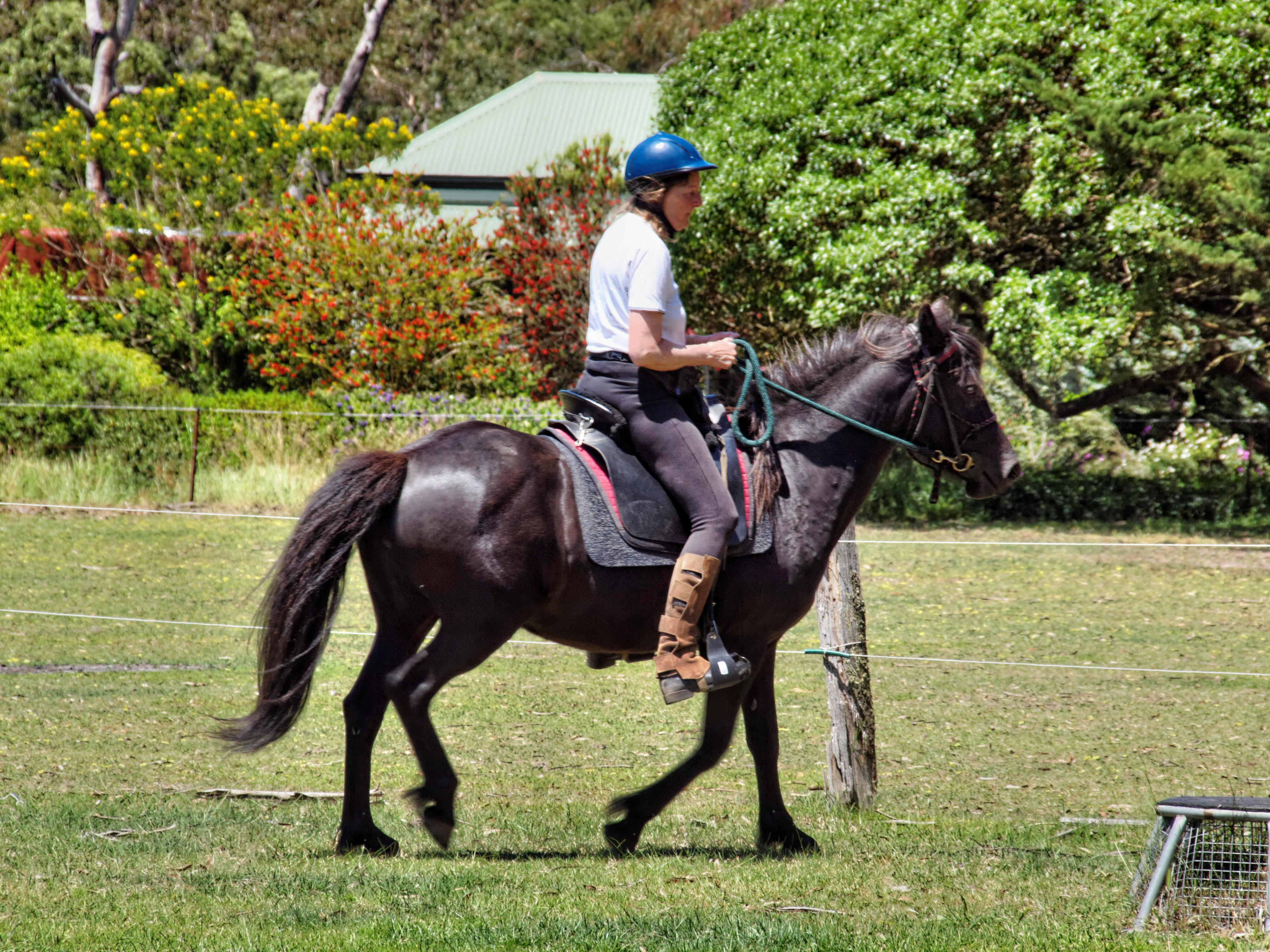 Riding-11.jpeg