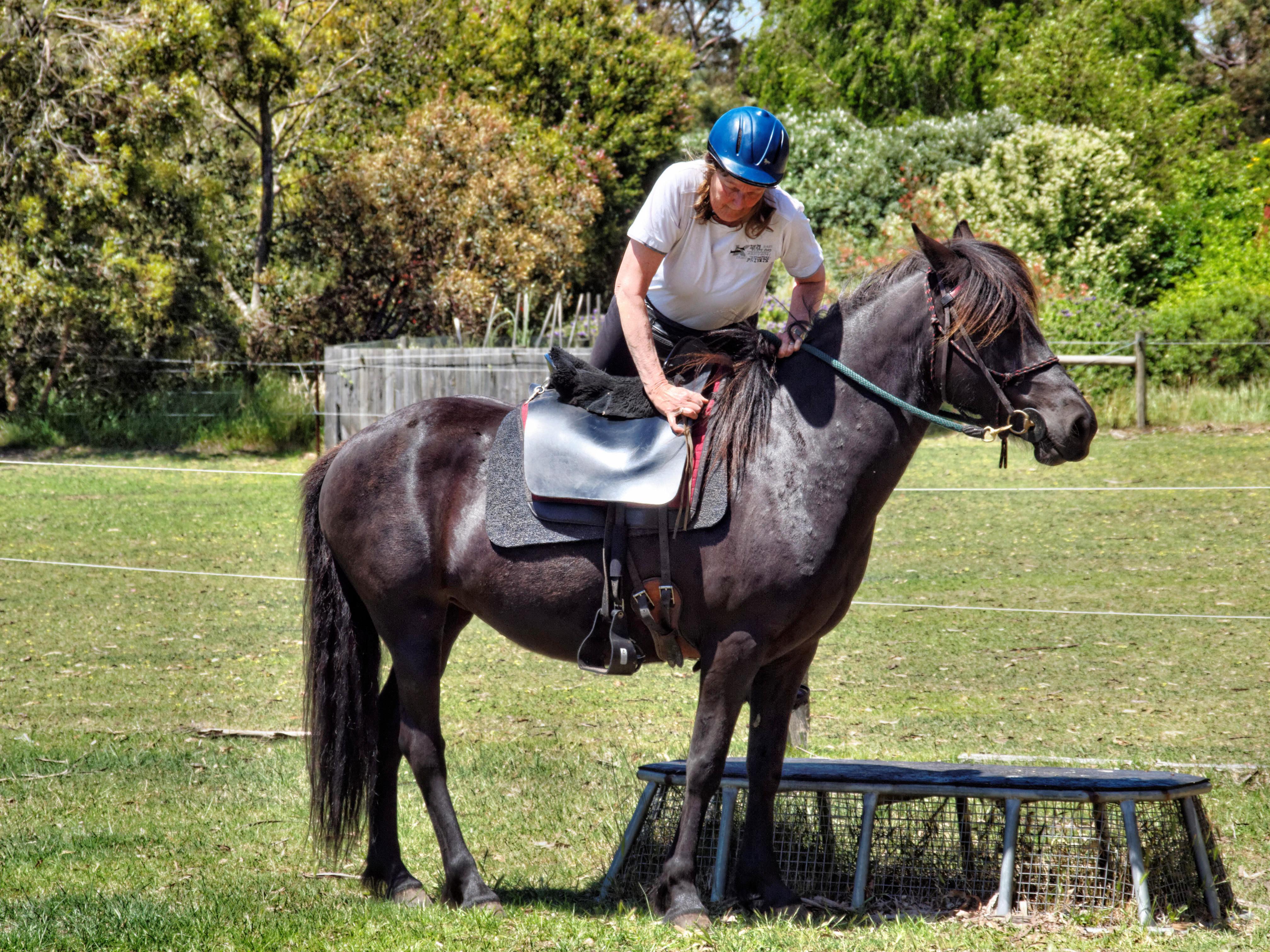 Riding-3.jpeg