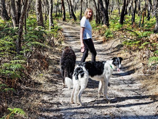 Walking-dogs-15.jpeg