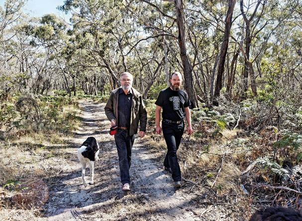 Walking-dogs-32.jpeg