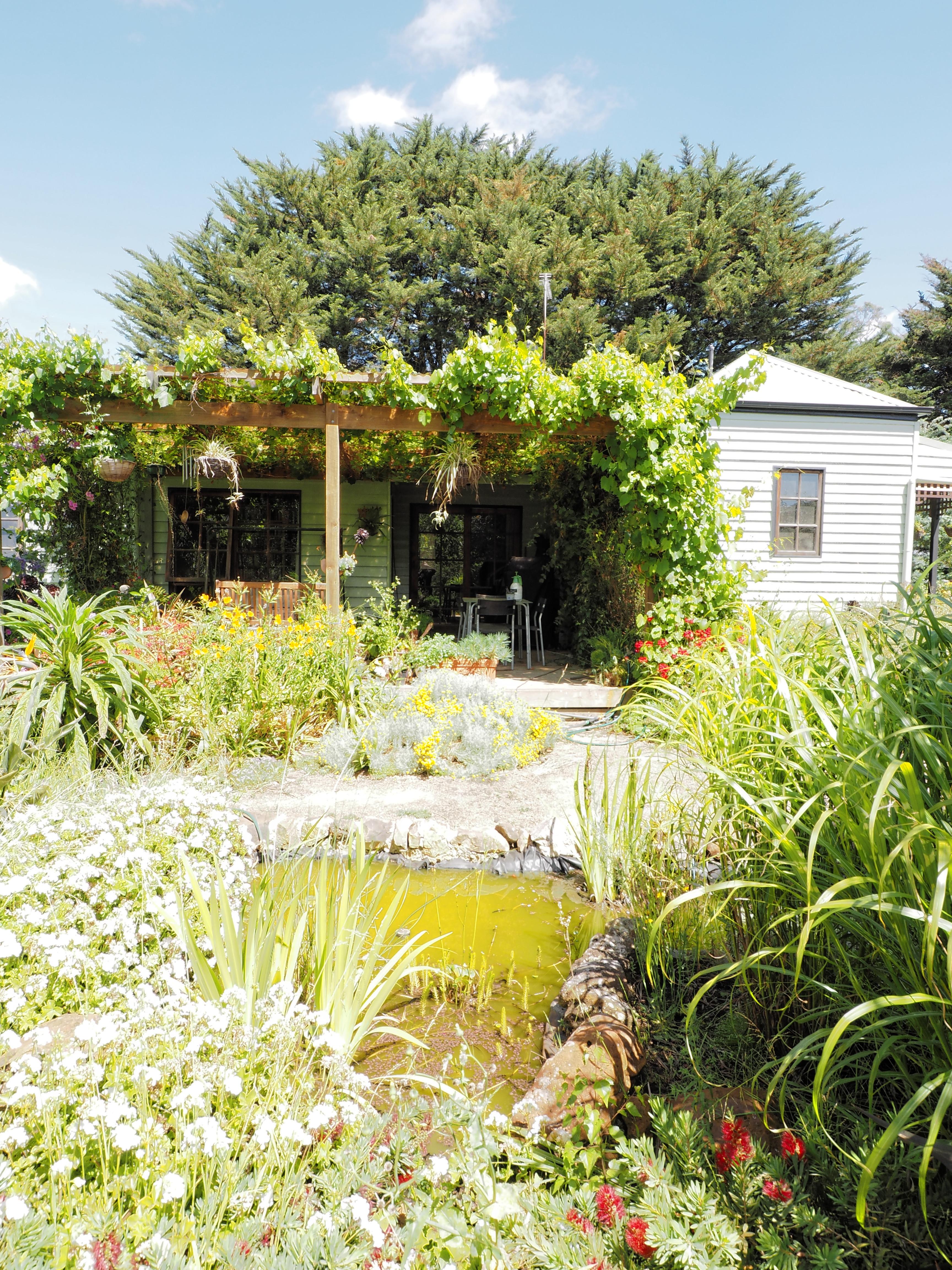 garden-centre-0+0EV-dup.jpeg