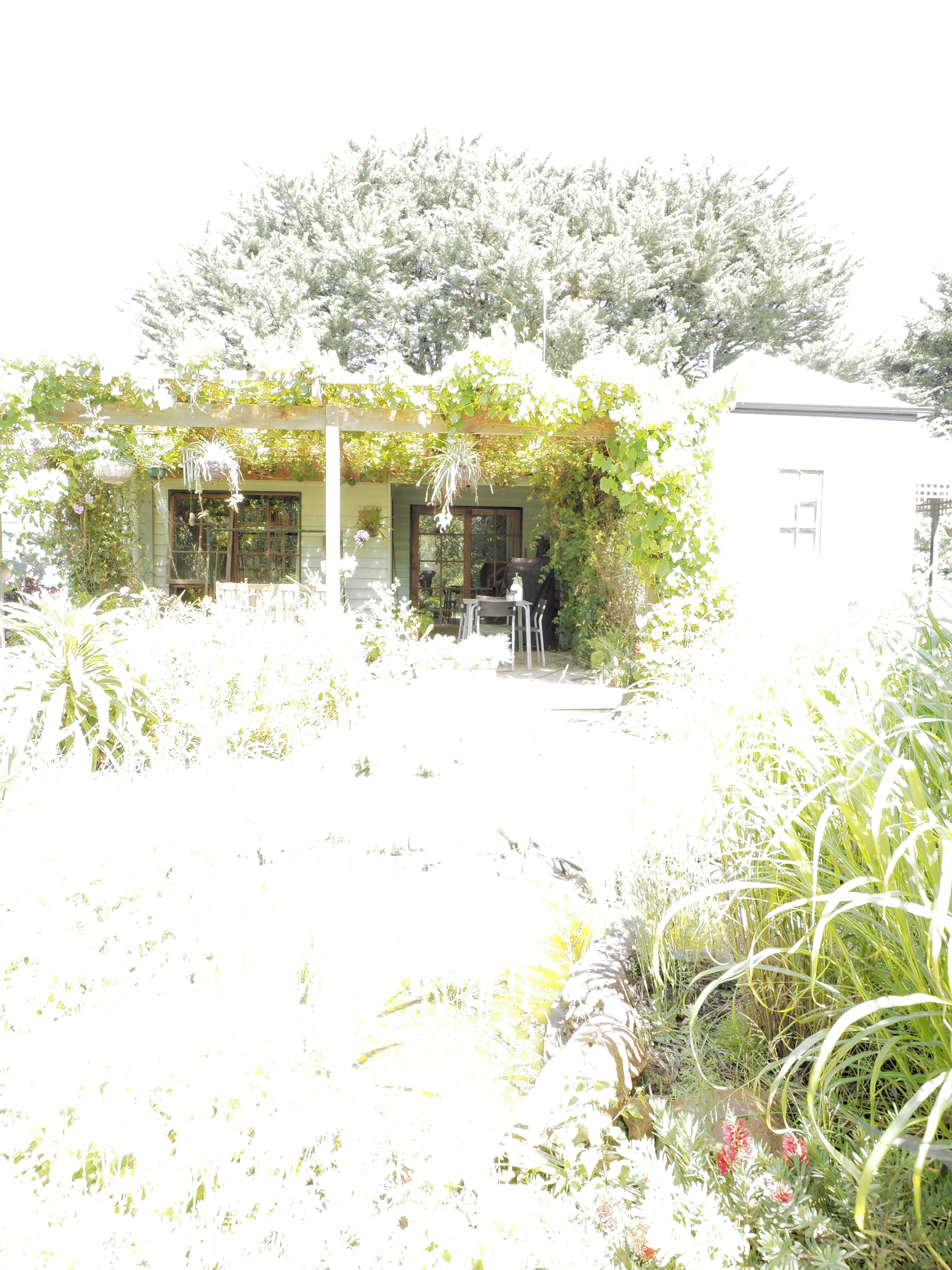 garden-centre-0+1EV-dup.jpeg