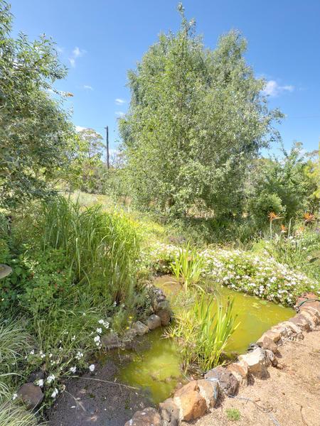 garden-path-centre-4.jpeg