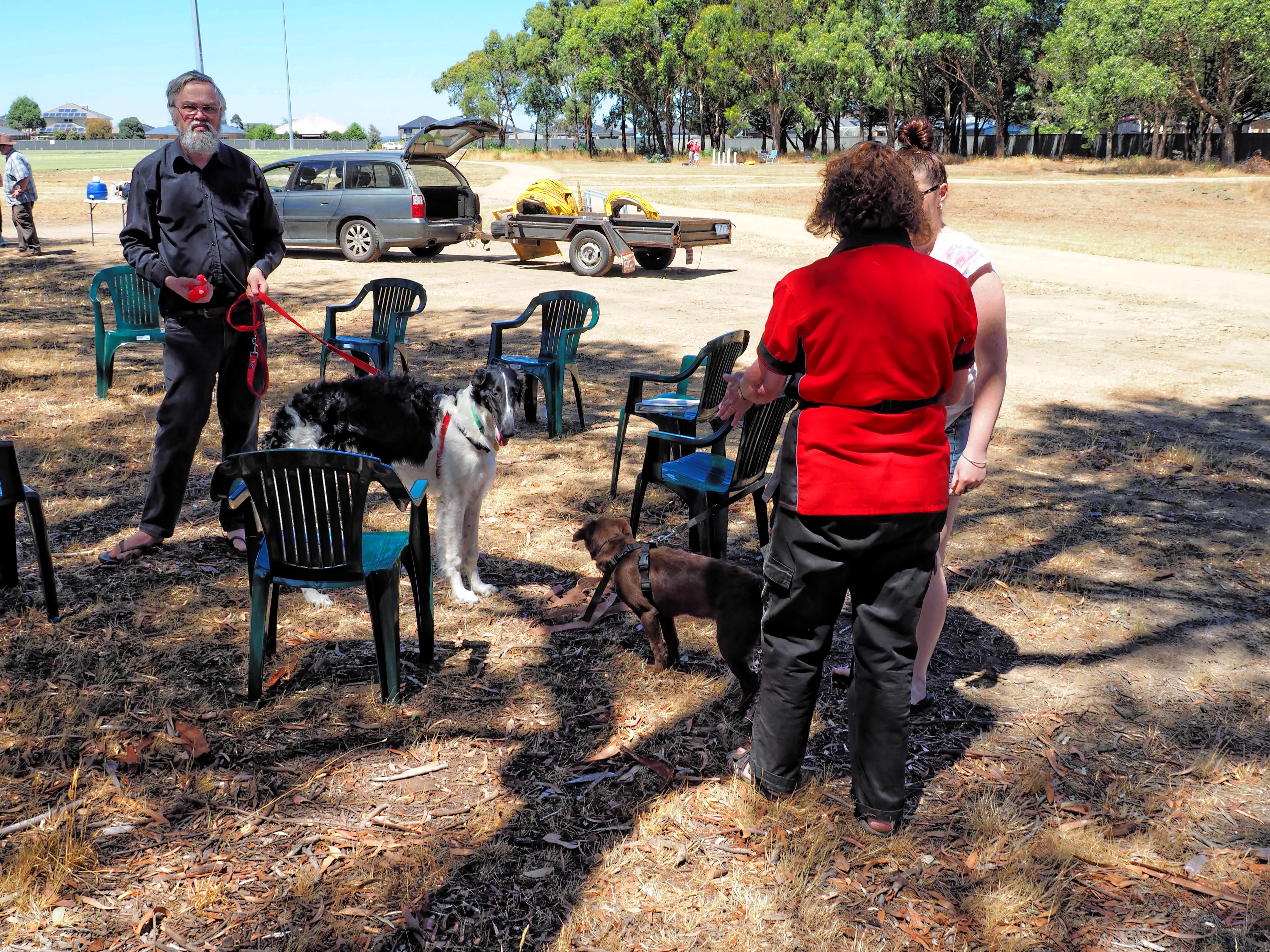 Dog-training-47.jpeg