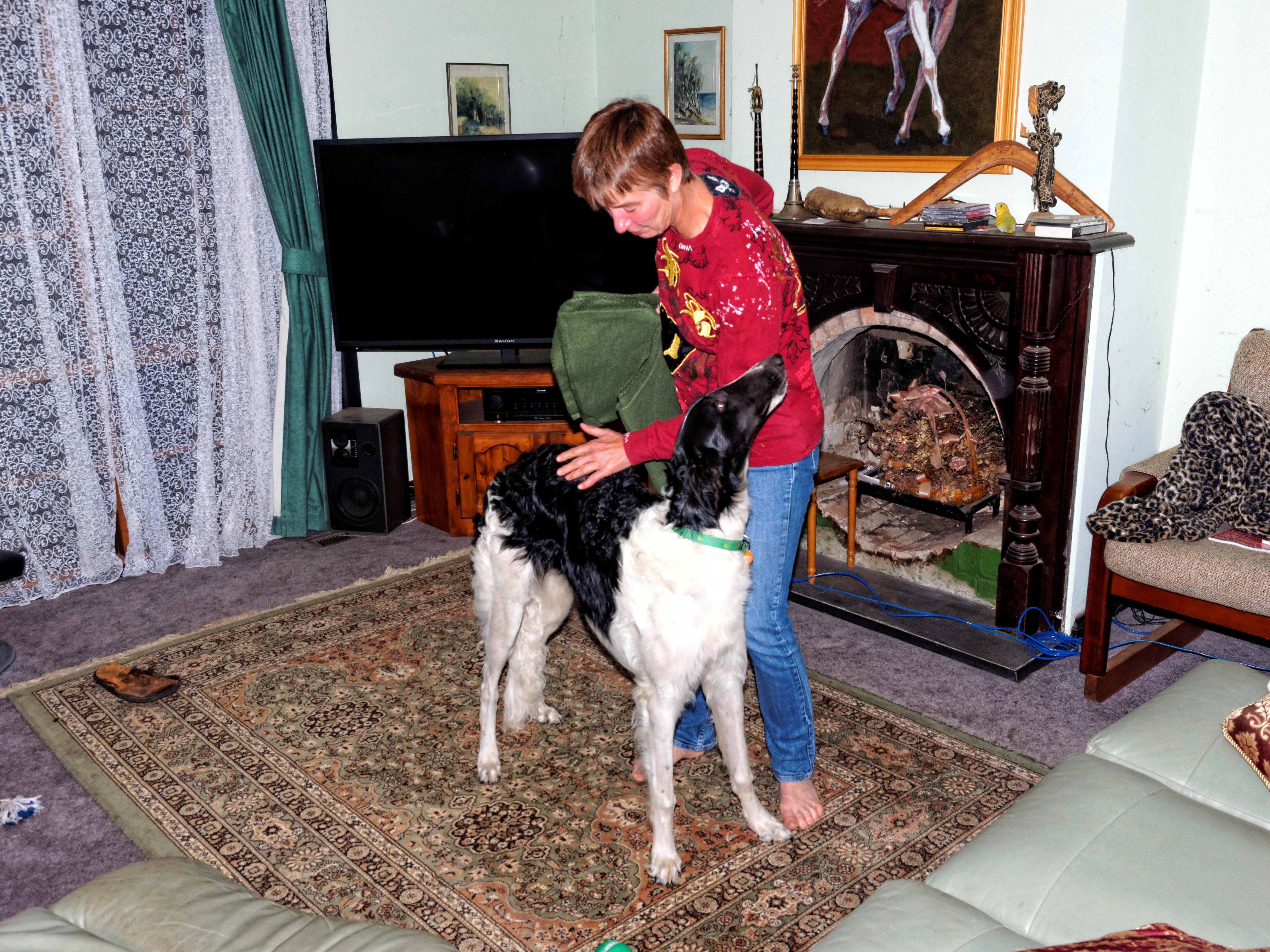 Chris-and-dogs-2.jpeg