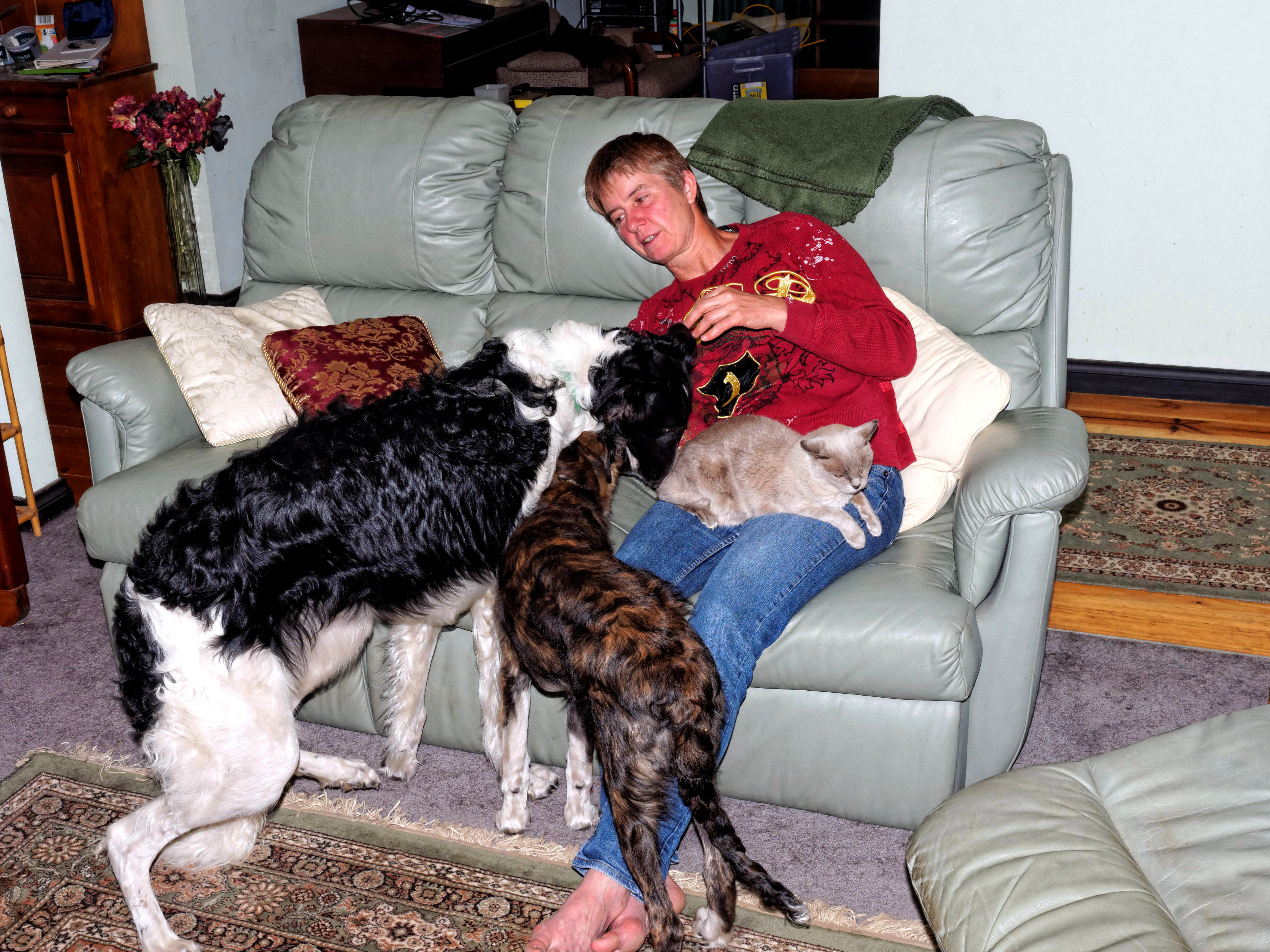 Chris-and-dogs-29.jpeg