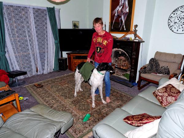 Chris-and-dogs-1.jpeg